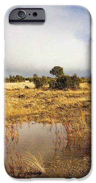 Tasmanian Storm  iPhone Case by Mike  Dawson