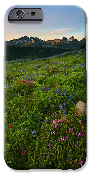 Meadow Photographs iPhone Cases - Tatoosh Wildflower Sunrise iPhone Case by Mike Dawson