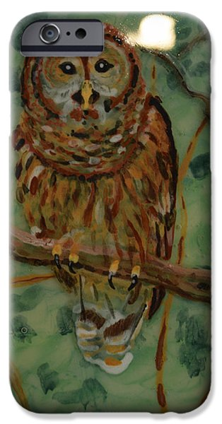Animal Glass iPhone Cases - Tawny owl iPhone Case by Rosalind Duffy