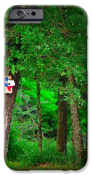 Raining iPhone Cases - Texas bird house iPhone Case by Ann Shaver