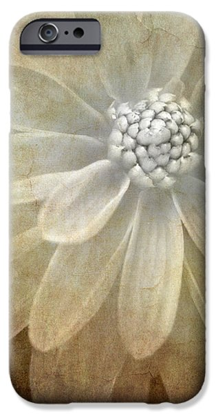 textured dahlia iPhone Case by Meirion Matthias