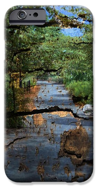 Pathway iPhone Cases - Textured Path iPhone Case by Thomas Mack