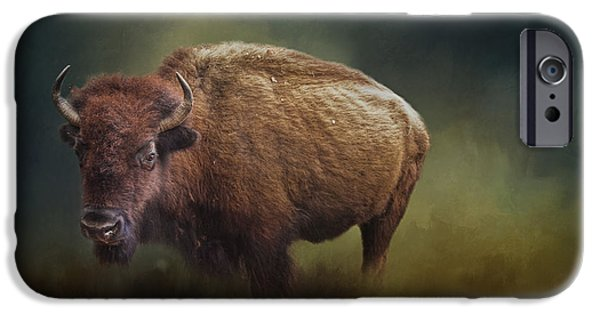 United States iPhone Cases - The American Bison iPhone Case by David and Carol Kelly