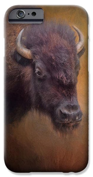 Animals Photographs iPhone Cases - The American Bison II iPhone Case by David and Carol Kelly