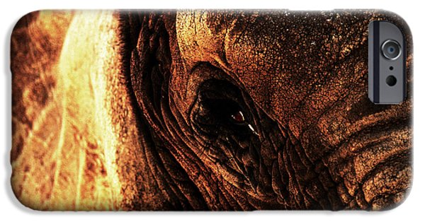 Elephant iPhone Cases - The Ancient One Watches iPhone Case by Wingsdomain Art and Photography