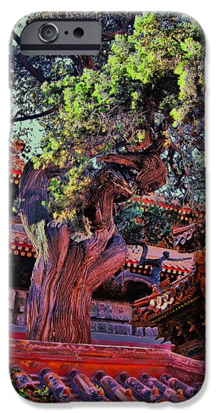 Epic iPhone Cases - The Ancient Tree. Next To The Secret City.  iPhone Case by Andy Za