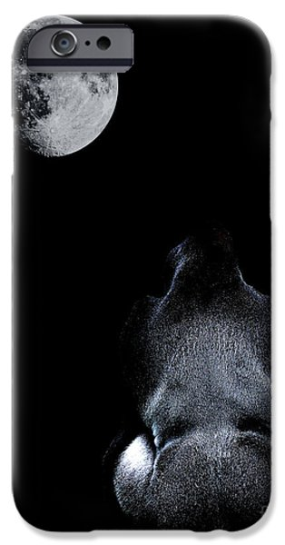 Ape Digital Art iPhone Cases - The Ape and The Moon . Photoart . R7917 iPhone Case by Wingsdomain Art and Photography
