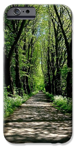 Pathway iPhone Cases - The Avenue of Limes At Mill Park 3 iPhone Case by Joan-Violet Stretch