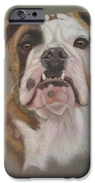 Dogs iPhone Cases - The Babe iPhone Case by Luci Garten