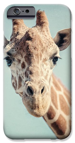 Zoo Animal iPhone Cases - The Baby Giraffe iPhone Case by Lisa Russo