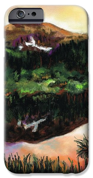 Sunset Pastels iPhone Cases - The Beaver Ponds iPhone Case by Frances Marino