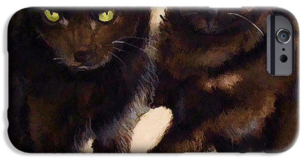 Fury iPhone Cases - The Black Cat Eyes Have It iPhone Case by Peter Hogg
