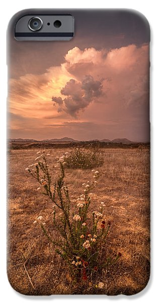 Temecula iPhone Cases - The Bouquet iPhone Case by Peter Tellone