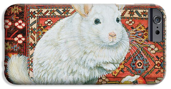 Persian Carpet iPhone Cases - The Carpet Chinchilla iPhone Case by Ditz