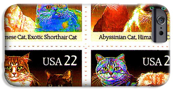 American Shorthair iPhone Cases - The Cats iPhone Case by Lanjee Chee