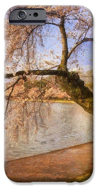 The Cherry Blossom Festival iPhone Case by Lois Bryan