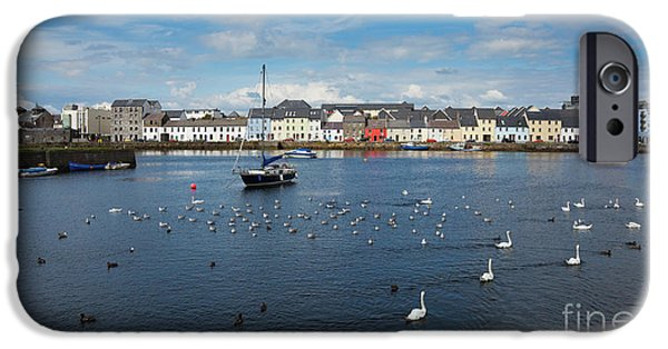 Best Sellers -  - Sea Birds iPhone Cases - The Claddagh Galway iPhone Case by Gabriela Insuratelu