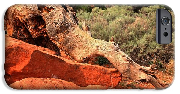 Red Cliffs iPhone Cases - The Creature At Red Cliffs iPhone Case by Adam Jewell