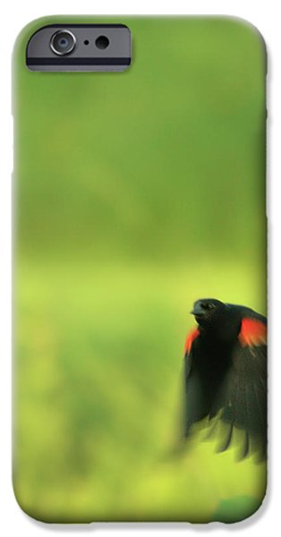 The Dancer iPhone Case by Aimelle