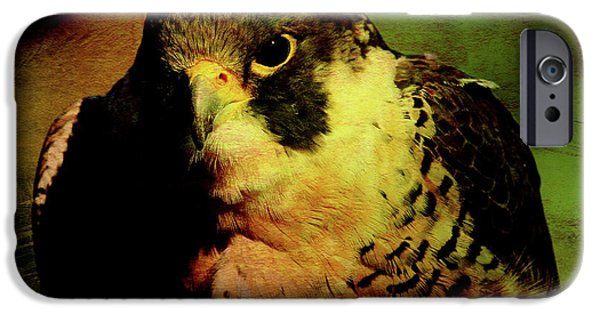 Red Tail Hawk Digital Art iPhone Cases - The Falcon iPhone Case by Wingsdomain Art and Photography