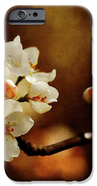 The Fleeting Sweetness of Spring iPhone Case by Lois Bryan