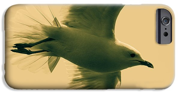 Flying Seagull iPhone Cases - The flying seagull  iPhone Case by Toppart Sweden