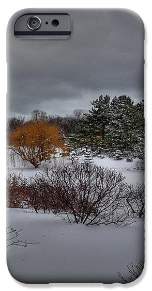 The Garden in Winter iPhone Case by David Bearden