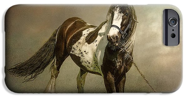 Horse iPhone Cases - The Gypsys Horse iPhone Case by Brian Tarr