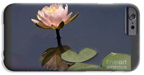 Shape iPhone Cases - The Heart Filled Reflection iPhone Case by Robin Erisman