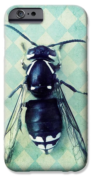 Fauna iPhone Cases - The hornet iPhone Case by Priska Wettstein