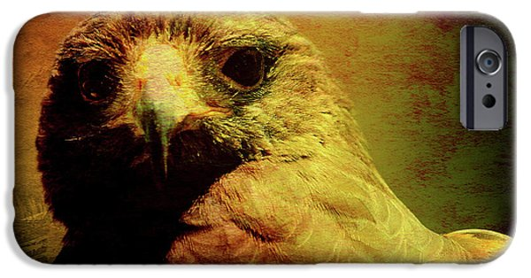 Red Tail Hawk Digital Art iPhone Cases - The Hunter . Portrait of a Hawk . Texture . 40D7877 iPhone Case by Wingsdomain Art and Photography