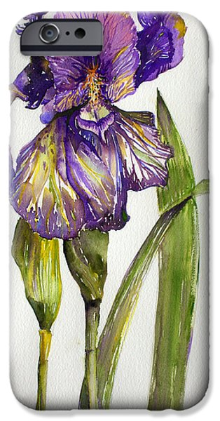 Botanical Drawings iPhone Cases - The Iris iPhone Case by Mindy Newman