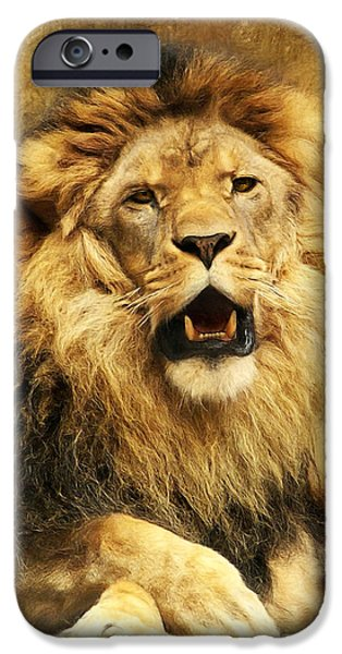 Lion iPhone Cases - The King iPhone Case by Angela Doelling AD DESIGN Photo and PhotoArt