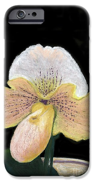 Botanical Pastels iPhone Cases - The Lady Slipper iPhone Case by Ginny Neece