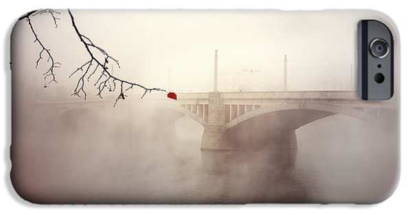 River View iPhone Cases - The last red leaf iPhone Case by Jaroslaw Blaminsky