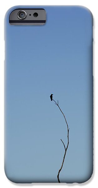President iPhone Cases - The Last iPhone Case by Thomas Shanahan