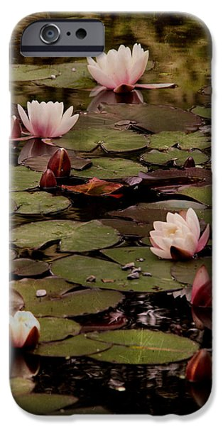 Rust iPhone Cases - The lily pond. iPhone Case by Dominic Moriarty