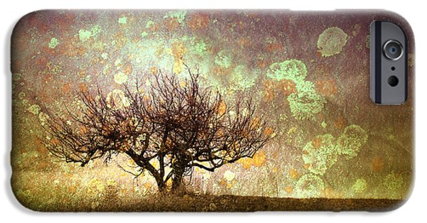 Tara Turner iPhone Cases - The Lone Tree iPhone Case by Tara Turner