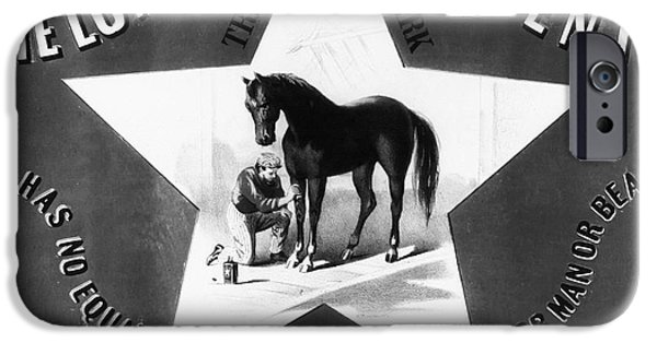 The Horse iPhone Cases - The Lonestar Liniment iPhone Case by Digital Reproductions
