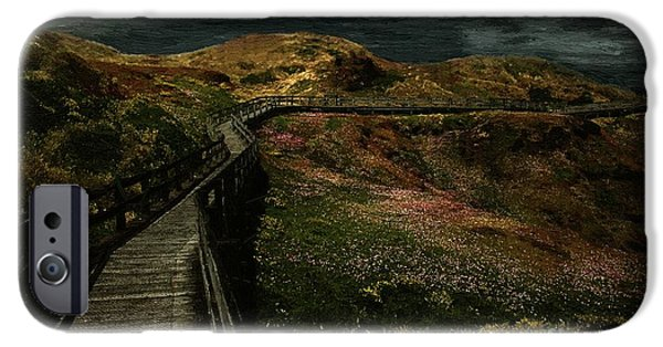 Rural iPhone Cases - The Long Road Home iPhone Case by RC deWinter