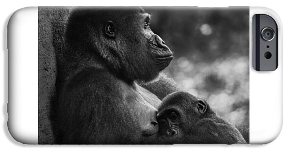 Bonding iPhone Cases - The love between a mother gorilla and son iPhone Case by Inc Pics Studios