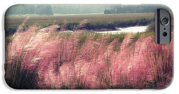 Swamp iPhone Cases - The Lowlands iPhone Case by Amy Tyler