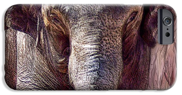 Elephant iPhone Cases - The Mighty One iPhone Case by Carol Cavalaris