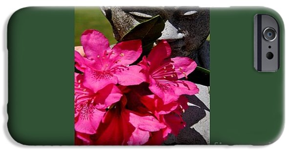 Miracle iPhone Cases - The Miracle of a Flower iPhone Case by Laurie DeVault