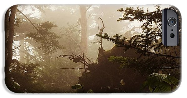 Mist iPhone Cases - The Misty Morning iPhone Case by Mark Large