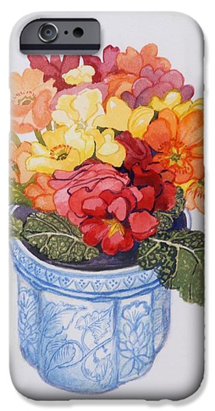 Primroses iPhone Cases - The Multicolored Primrose iPhone Case by Joan Thewsey