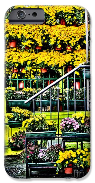 Facade iPhone Cases - The Old Bohemian Quarter Skadarlija Belgrade iPhone Case by Milan Karadzic