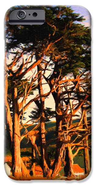 Bay Area Digital iPhone Cases - The Old Grove At The Ranch At Sunset . 40D4531 . Painterly iPhone Case by Wingsdomain Art and Photography