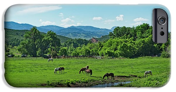 The Horse iPhone Cases - The Old Water Hole iPhone Case by Jon Burch Photography
