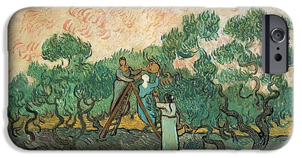 Impressionist iPhone Cases - The Olive Pickers iPhone Case by Vincent van Gogh